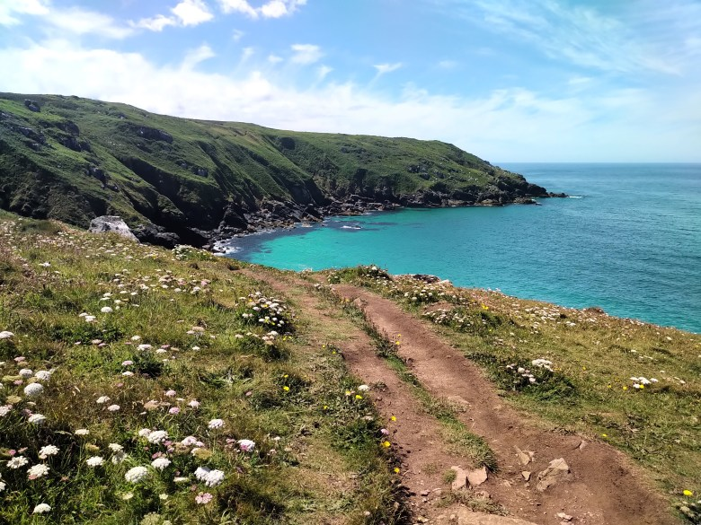 Path out of St Ives ORIGINAL - steph boon